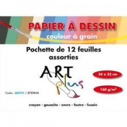 Pochette de 12 feuilles dessin couleurs assorties 160g format 24x32cm